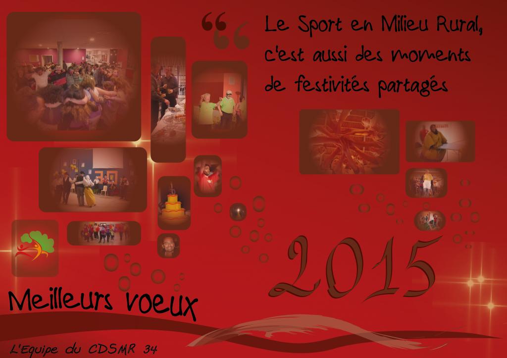 CDSMR34_voeux2015